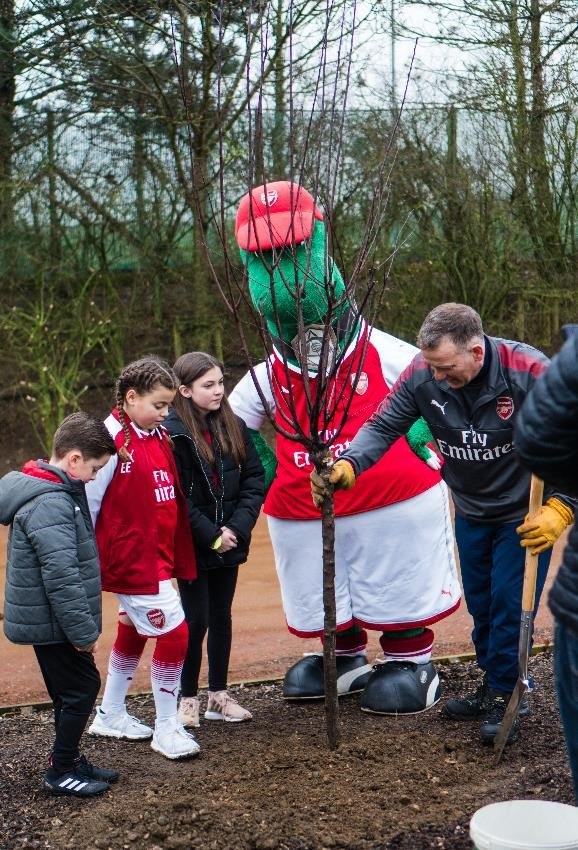 Arsenal tree planting 3
