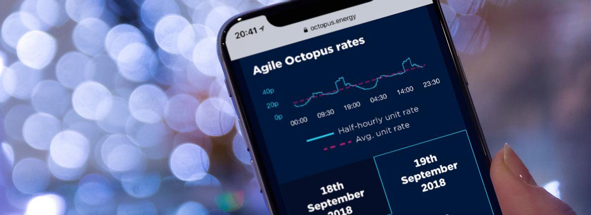 Agile Octopus report banner
