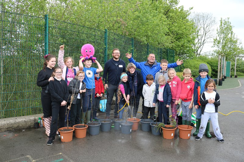 A photo of Darton Primary tree planters