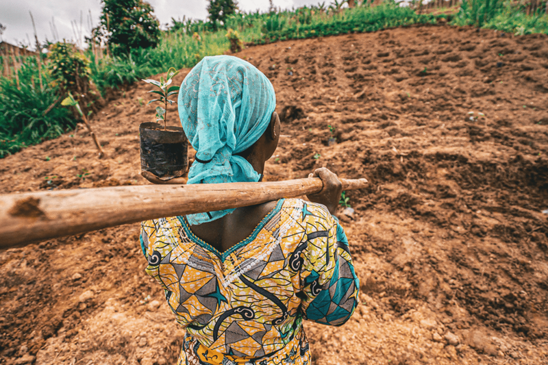 An image of a woman heading to plant a tree for International Women's Day