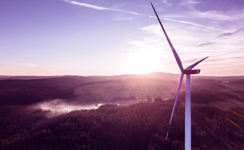 An image of the ripple nergy windfarm