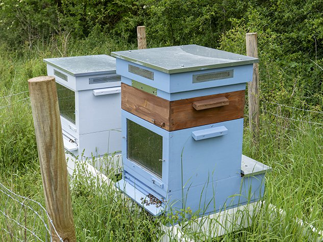 Southill thermo-solar beehives