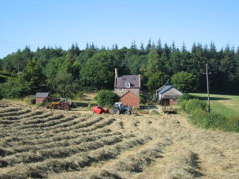 An image of the buildings at Treflach farm