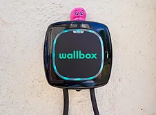 An image of a wallbox pulsar charger with an octopus to sitting on top of it