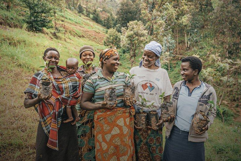 Women planting trees and celebrating International Women's Day