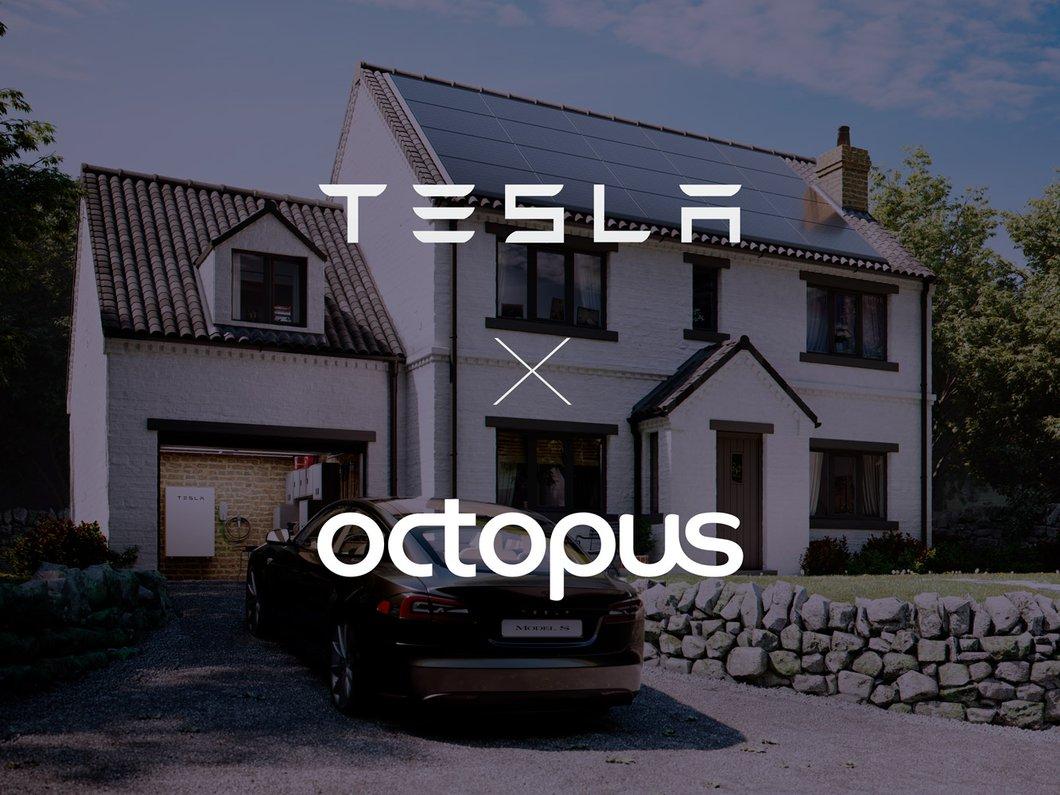 octopus.energy
